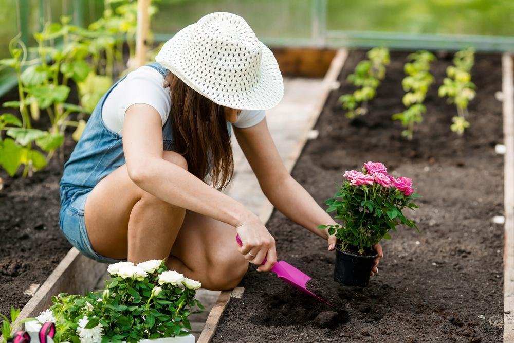 The numerous benefits of gardening